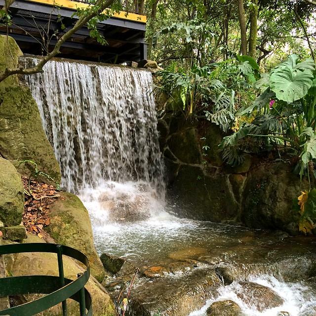 Cascada en el Jardín Botánico Jose Celestino Mutis #bogotá… | Flickr