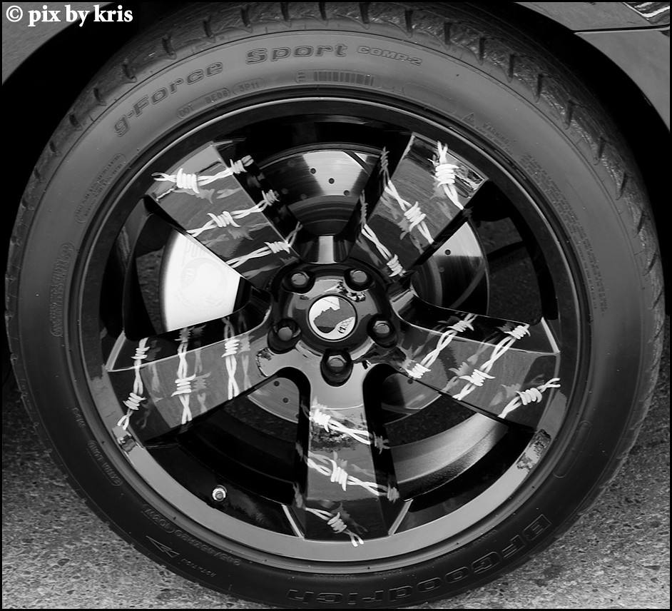 barb wire wheels | pixbykris | Flickr