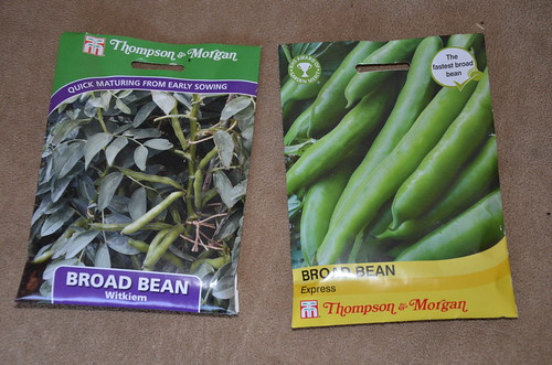 broad bean seeds Mar 17
