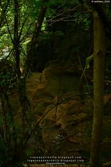 Urederra (Bakedano, Navarra)