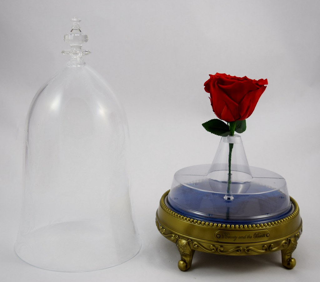 Enchanted rose bluetooth speaker by camino disney beauty flickr enchanted rose bluetooth speaker by camino disney beauty and the beast deboxing out izmirmasajfo