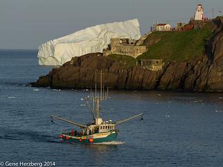 Fishing boat returning to st john 39 s harbour fort amherst for John s pass fishing