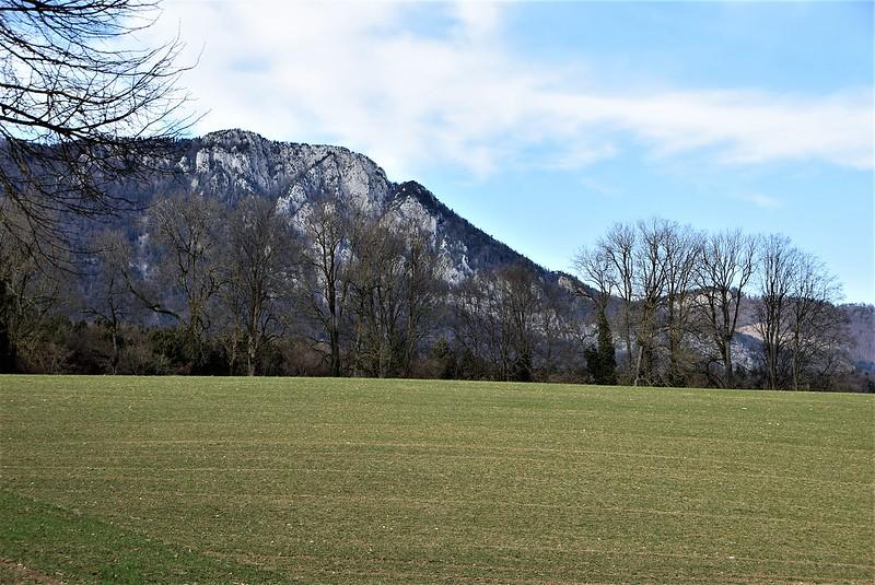 Feldbrunnen village 23.02 (28)