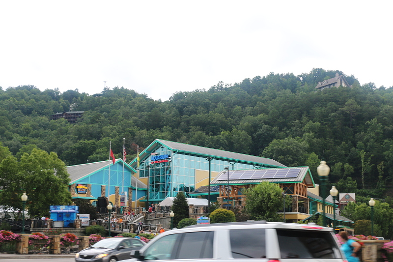 ripleys-aquarium-gatlinburg