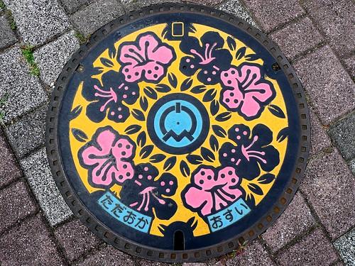 Tadaoka Osaka, manhole cover (大阪府忠岡町のマンホール)