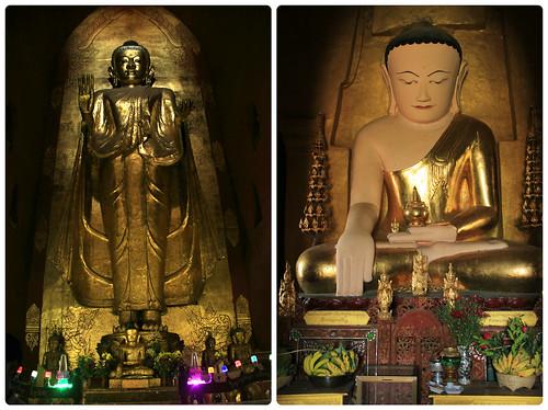 Lavish Buddhas