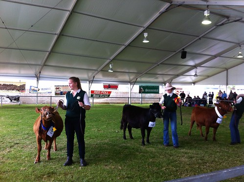 Perth Royal Show 2014 | by Miss Shari