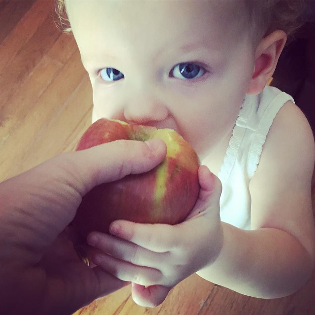 She is an apple addict. If I want to eat one, I either have to share or hide in the pantry.