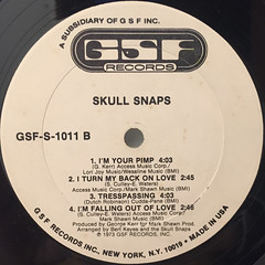 SKULL SNAPS:SKULL SNAPS(LABEL SIDE-B)