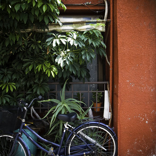 Red Wall with Aloe and Bicycle, Kita Senju, Tokyo | by jacob schere [in the 03 strategically planning]