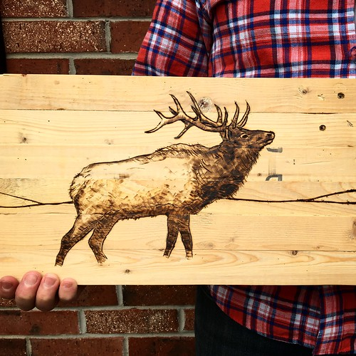 Pyrograph elk on reclaimed wood.