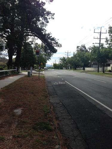 Springfield Road, Blackburn North