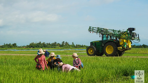 Crop Health Training for Agricultural Extension Workers