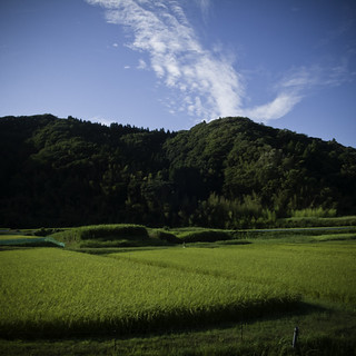Rice Paddy to the Hills and Sky, Yoroukeikoku, Chiba | by jacob schere [in the 03 strategically planning]