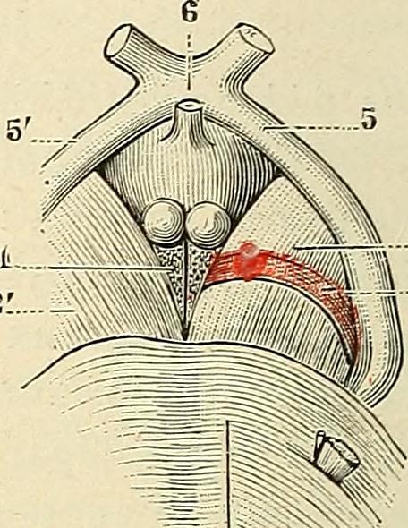 Rencontre Sexe – Page 56