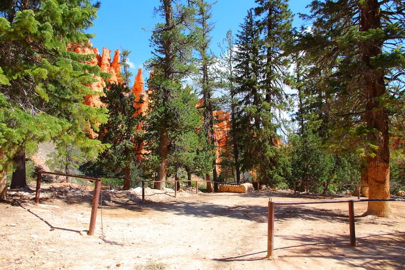 IMG_0164 Peekaboo Trail