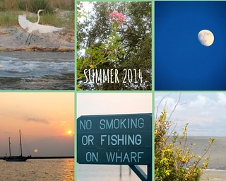 Summer 2014 Collage | by LilRonGal