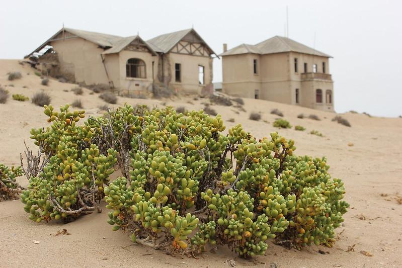 Kolmanskop Ghost Town (foto 1/3)