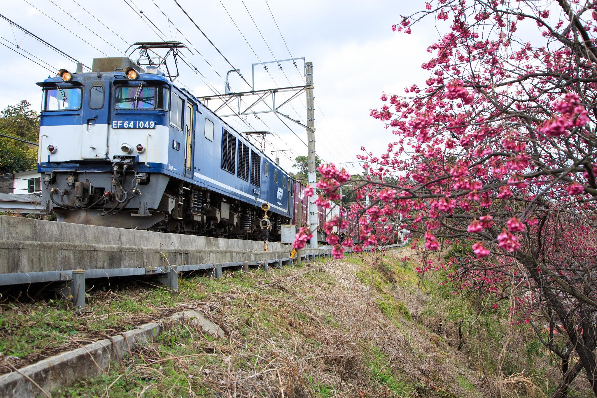 EF64 1049 / Tokaido Line