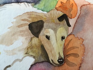 dog aquarel watercolor