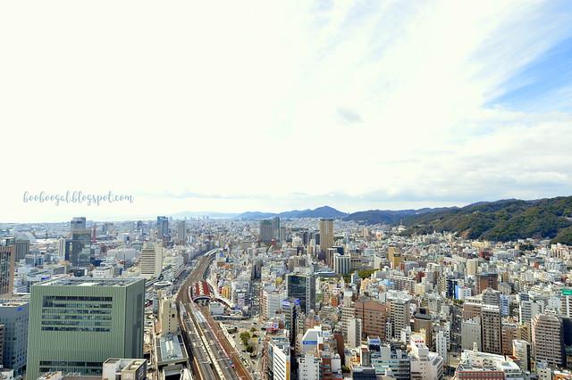 DSC_0437blog