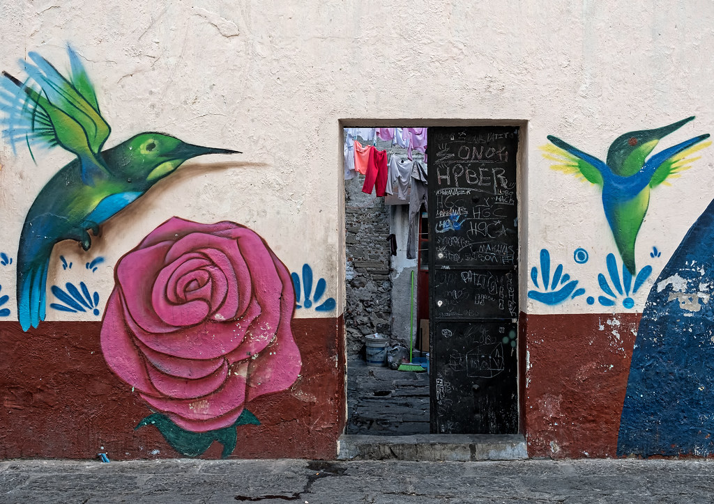 graffiti on a wall, surrounding a door. On one side of the door, a green-blue hummingbird hovers over a pink rose in full blossom. On the other side of the door, another, smaller, hummingbird hovers, head upright, wings outstretched.