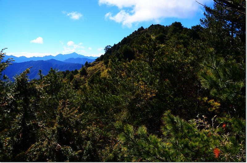 2834山頭南望石水山主峰及其左後方的關山~關山嶺山稜線