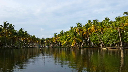 Backwaters Kerala