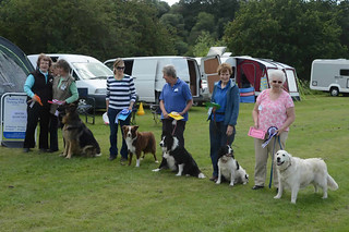 DSC_0403 | by Chadkirk Dog Training Club