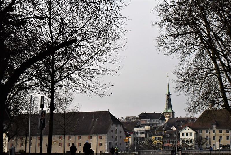 Feldbrunnen to Solothurn 10.02 (13)