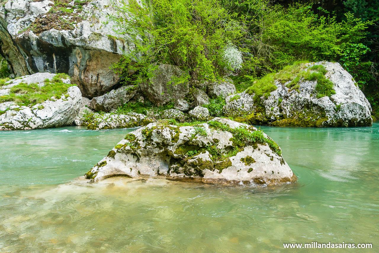 Río Deva a su paso por el desfiladero de La Hermida