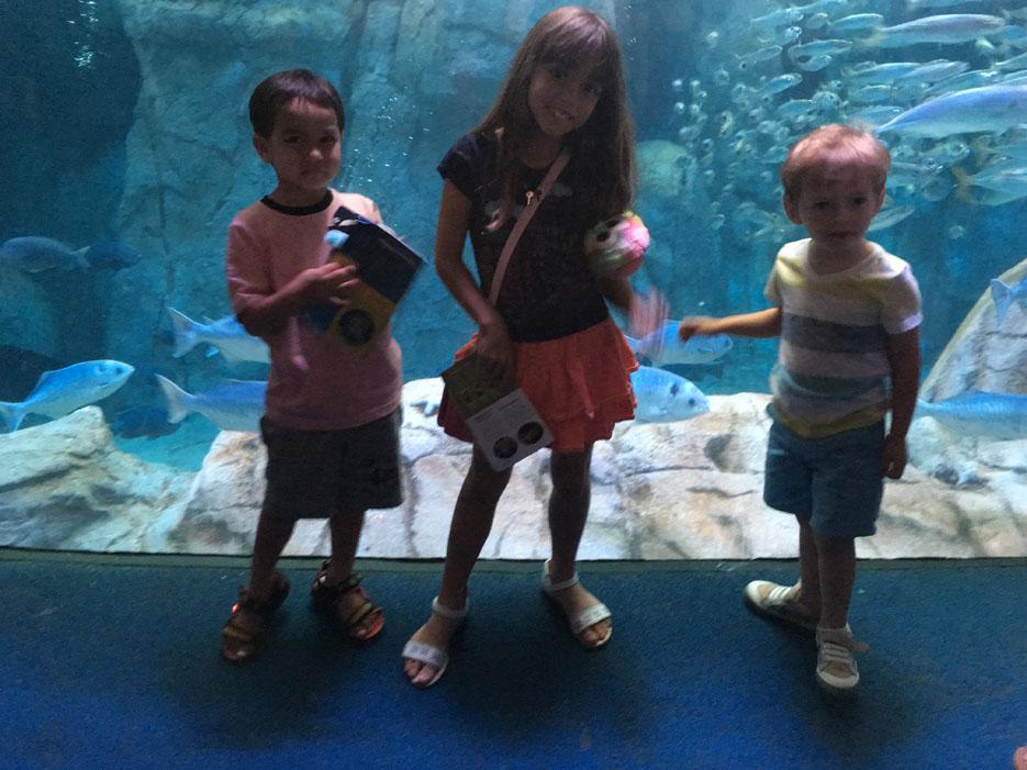 060516_aquarium32