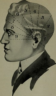 "Image from page 90 of ""Brains and how to get them"" (1913) 