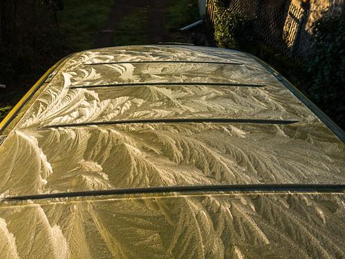 Frozen roof/ frostwork