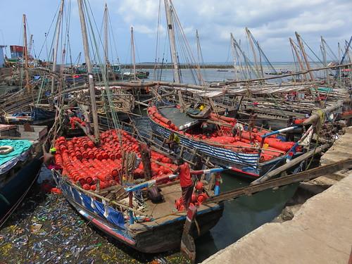 Dhow Harbour - Zanzibar