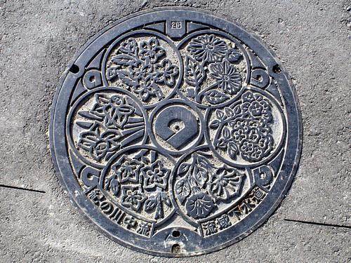 Wakayama Prefecture, manhole cover 2 (和歌山県のマンホール2)