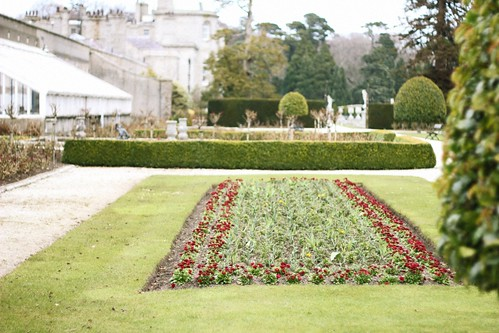 flower parterre | by The Art of Exploring