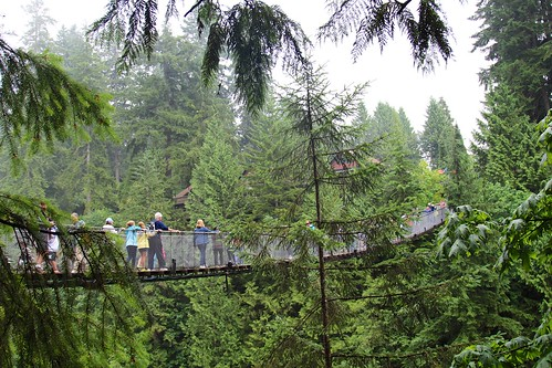 Large Suspension Bridge crossing the Capilano River | by daveynin