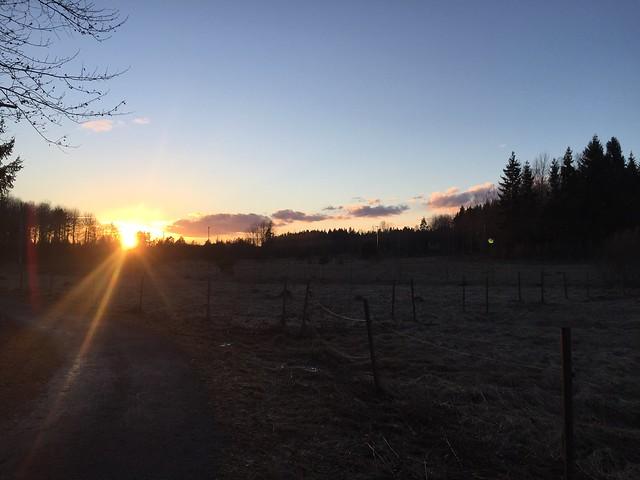 Vårtecken - solnedgång