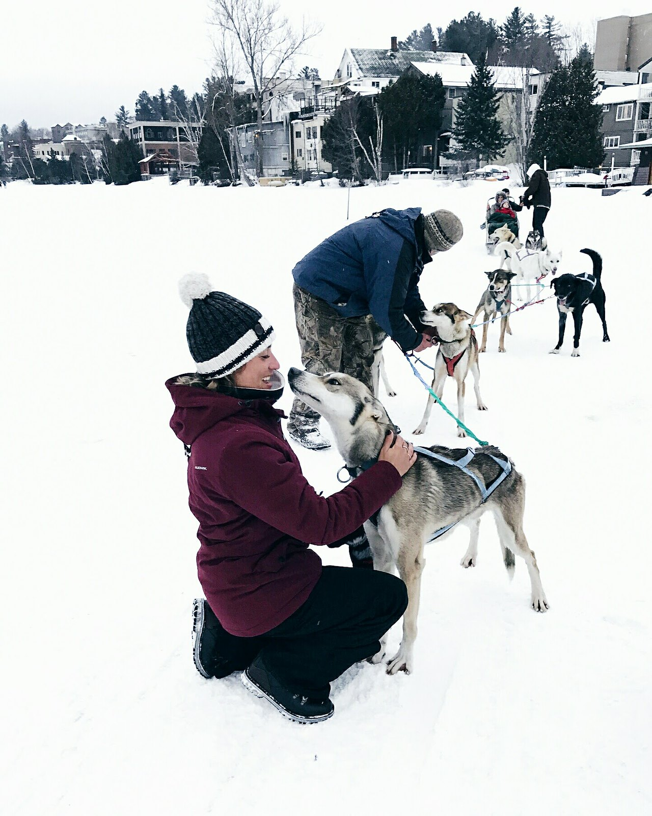 ski chien traineau lake placid