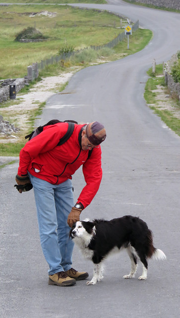 A lovely little Border Collie greets us on our walk around the Aran Island of Inisheer