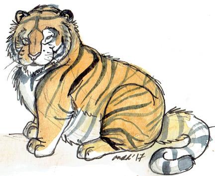 2.11.16 - Chub Tiger