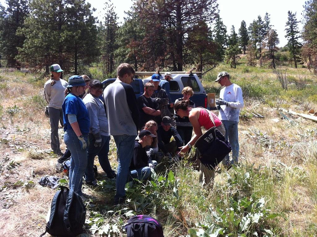 stewardship work 2014
