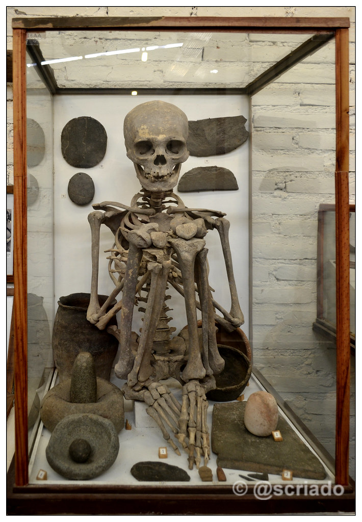 Esqueleto femenino Comechingon (rocsen)   Comechingón es la …   Flickr