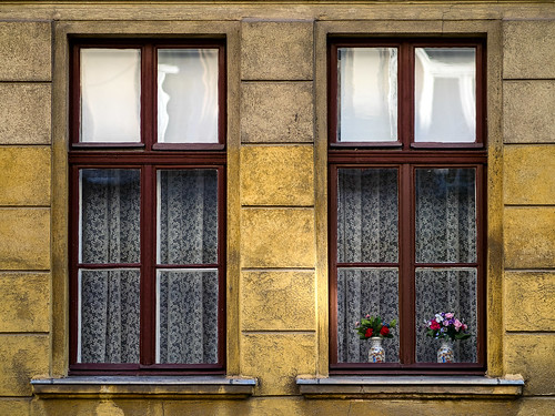 Windows. | by Simon Matzinger
