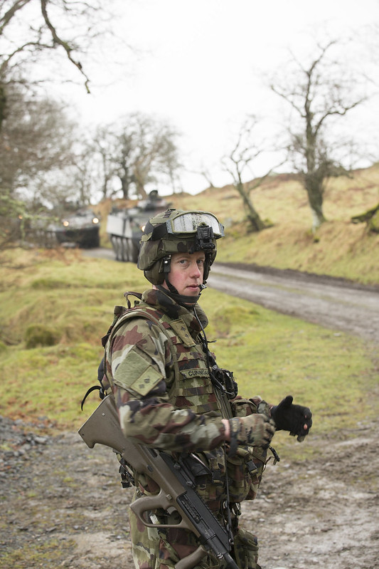 Armée Irlandaise/Irish Armed Forces - Page 2 33150545722_14950886a7_c