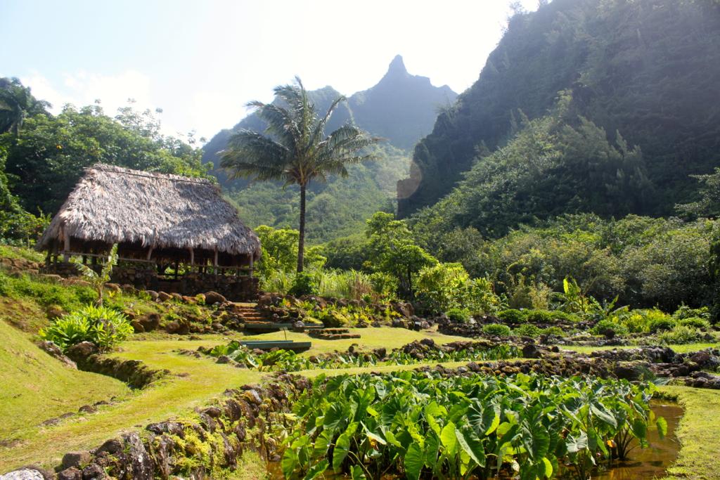 Limahuli Garden & Preserve - Kauai, Hawaii | Jeff | Flickr