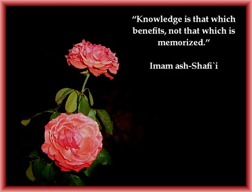 Knowledge... and knowledge management saw the light (Credits: Iqbal Osman / FlickR)