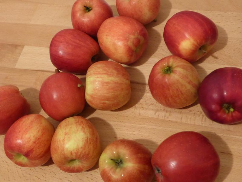 Apfelkuchen backen 011