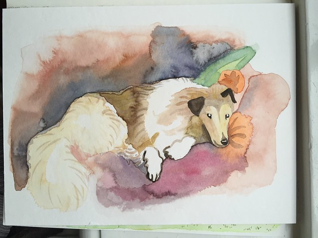 dog aquarel Schmincke Horadam